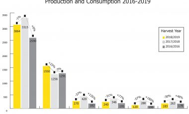 production and consumption 2016-2019